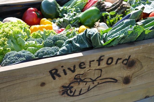 Riverford Organic Food