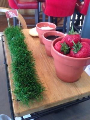 The Almanack Kenilworth Dip Your Own strawberries
